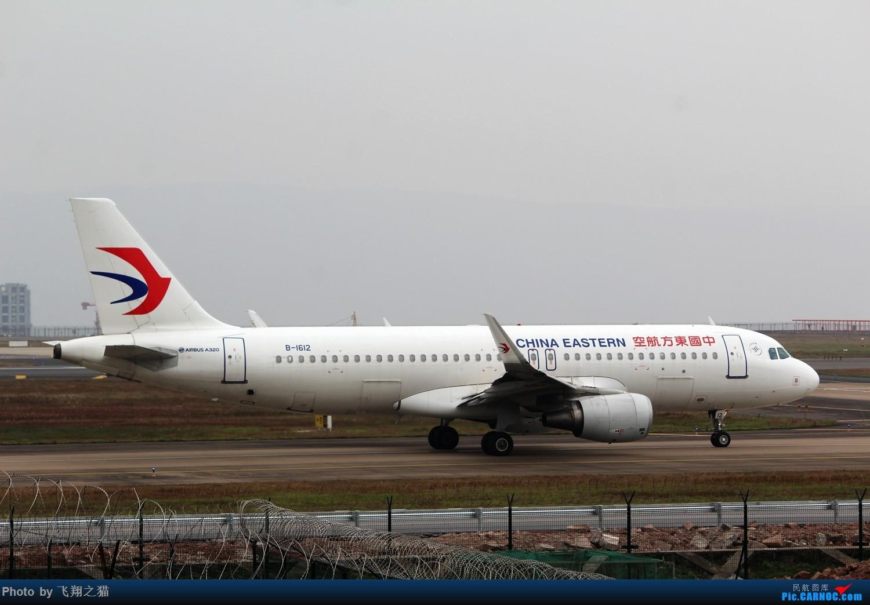 Re:[原创]CKG拍机(新年第一拍,川农th100,巧遇海航长安银行,小门神彩绘) AIRBUS A320-200 B-1612 重庆江北国际机场