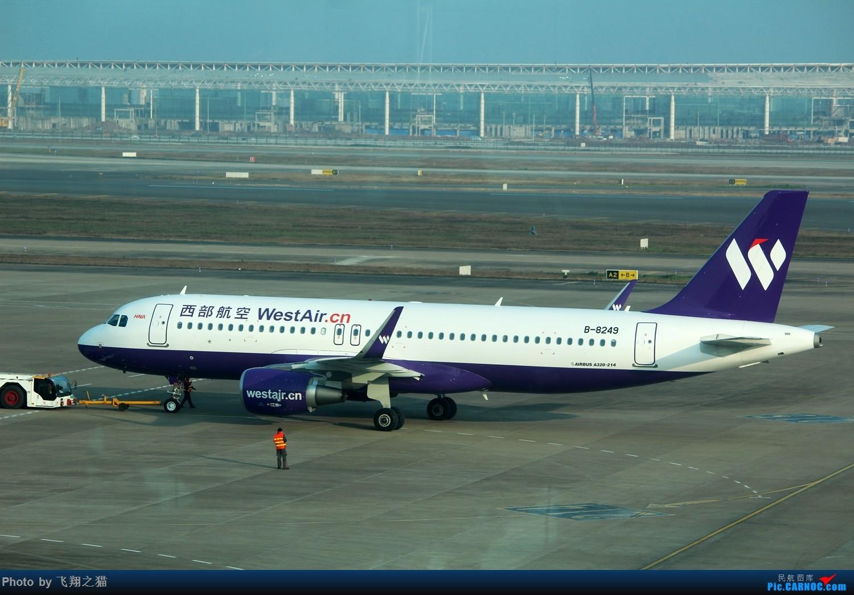 Re:[原创]CKG拍机(新年第一拍,川农th100,巧遇海航长安银行,小门神彩绘) AIRBUS A320-200 B-8249 重庆江北国际机场