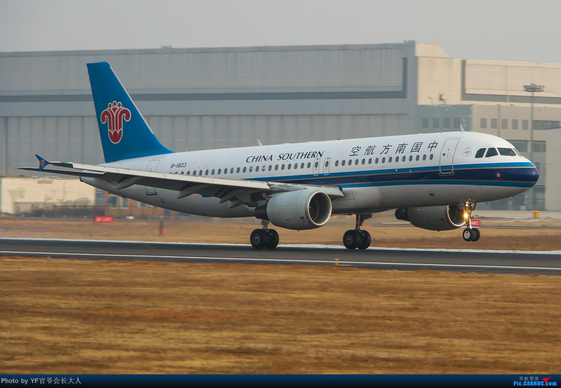 Re:[原创]【ZYTX】冬天不适合拍机 AIRBUS A320-200 B-1803 中国沈阳桃仙国际机场