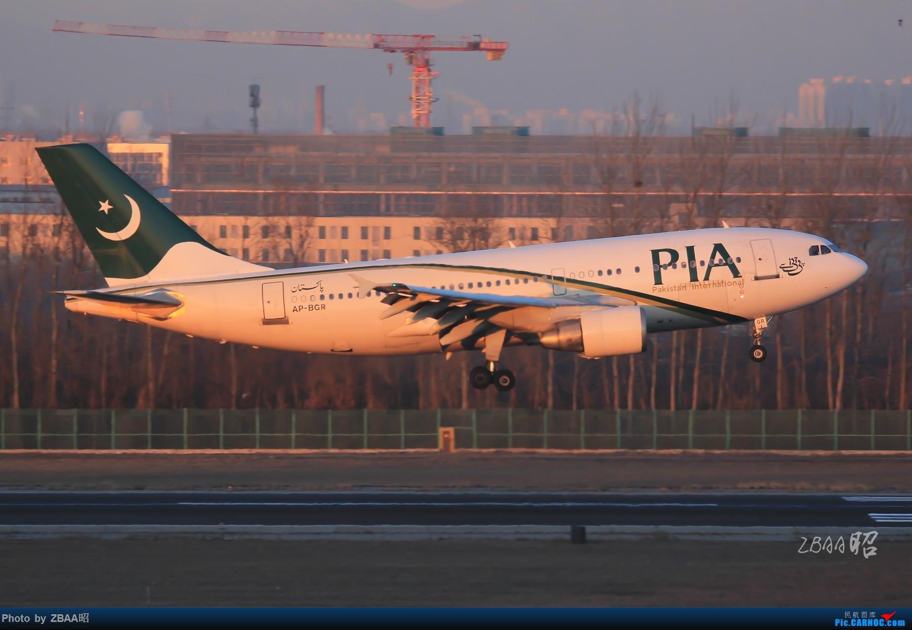 Re:[原创]飞友聚会后的独自疯狂,格林豪泰隔天怒打ZBAA 36L跑道,夜拍海航宽体机,寒风中坚守楼顶阵地 AIRBUS A310 AP-BGR 中国北京首都国际机场