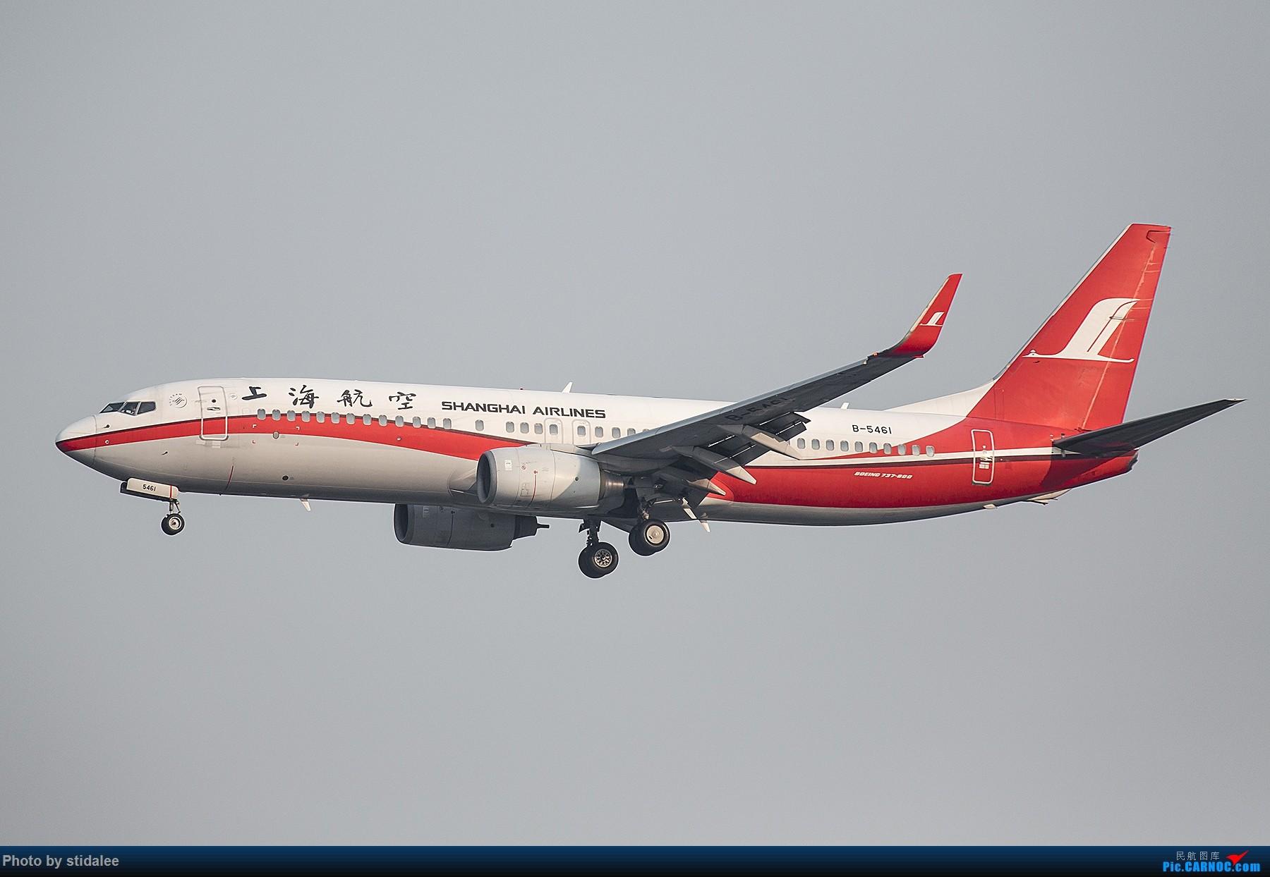 Re:[原创]SHA拍机 各种地主上航飞机 最喜欢的涂装 BOEING 737-800 B-5461 中国上海虹桥国际机场