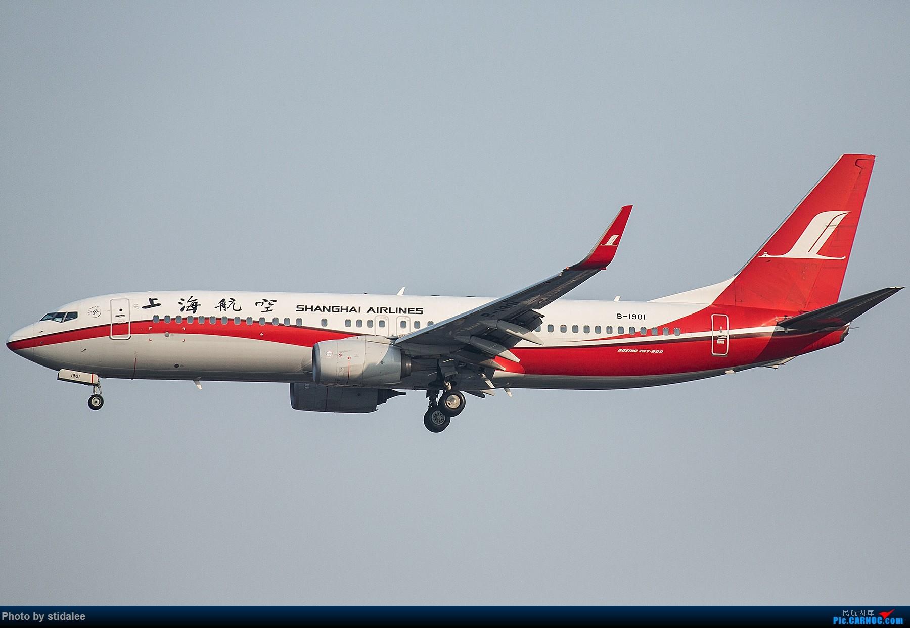 Re:[原创]SHA拍机 各种地主上航飞机 最喜欢的涂装 BOEING 737-800 B-1901 中国上海虹桥国际机场