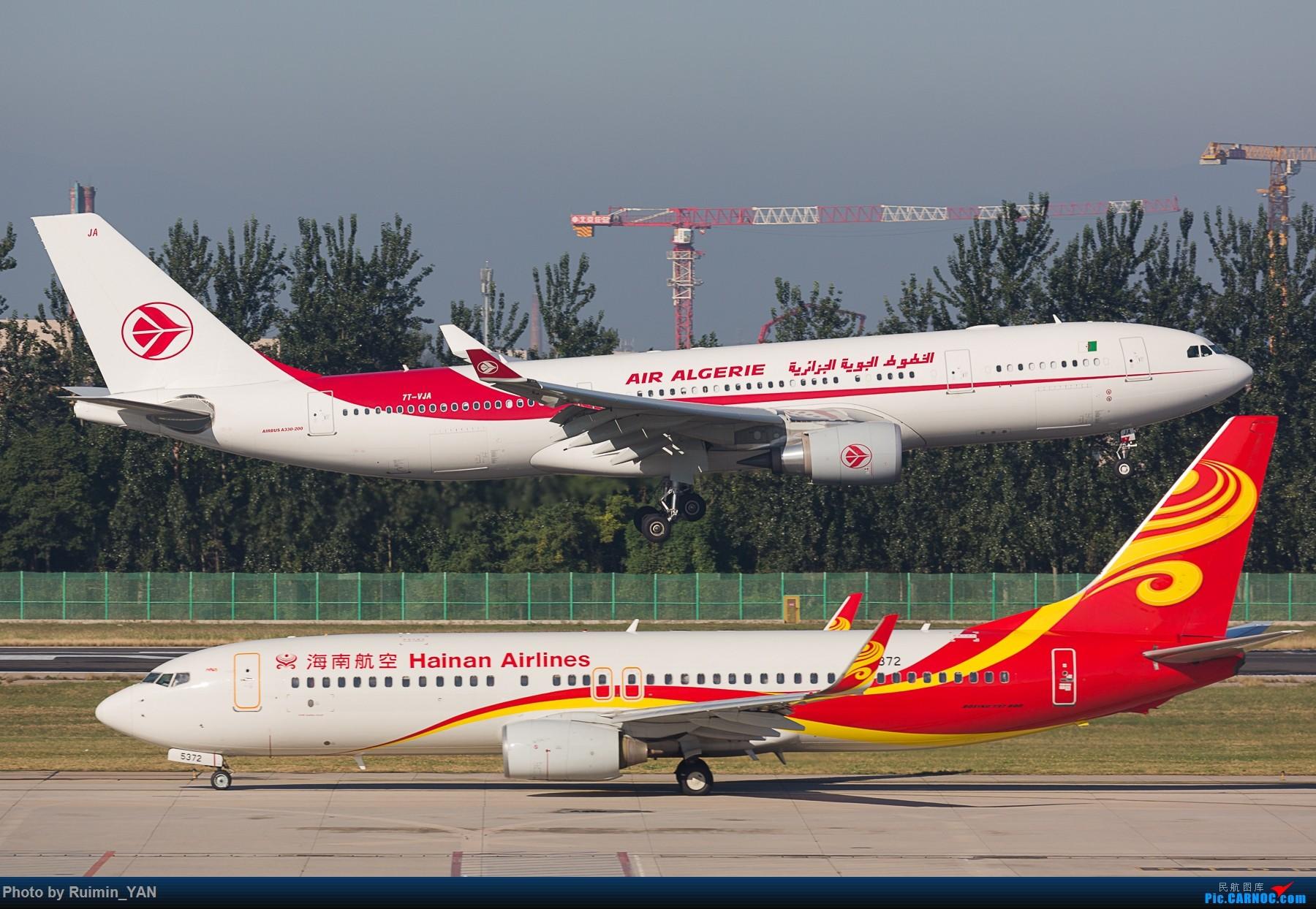 AIRBUS A330-200 7T-VJA 中国北京首都国际
