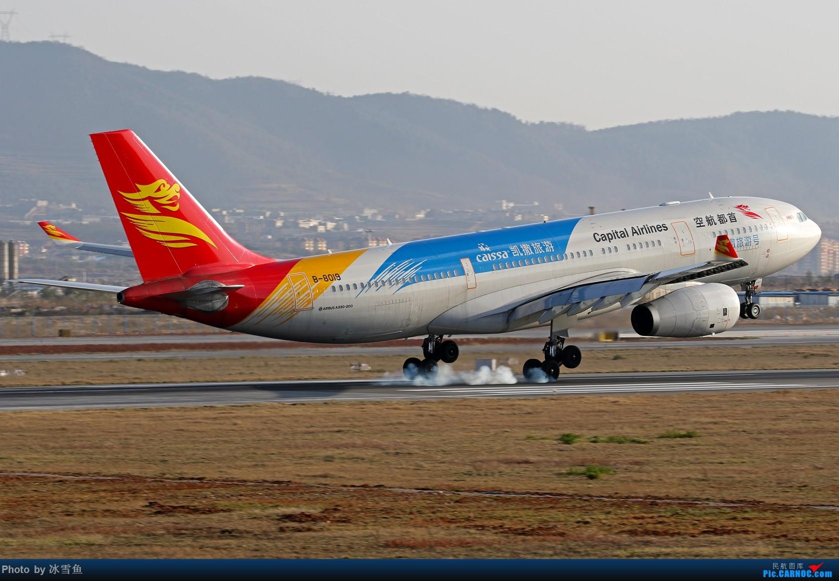 [原创]【BLDDQ-昆明飞友会】春节假期有时间去长水拍拍,不要问我位置............ AIRBUS A330-200 B-8019 中国昆明长水国际机场
