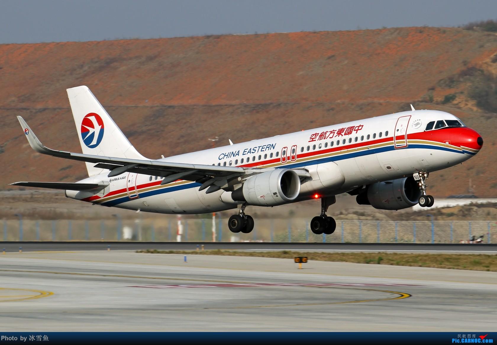 Re:[原创]【BLDDQ-昆明飞友会】春节假期有时间去长水拍拍,不要问我位置............ AIRBUS A320-200 B-9950 中国昆明长水国际机场