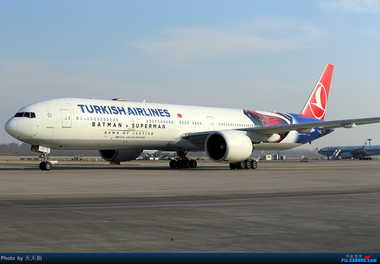 [转贴]土耳其航空公司波音777-300ER彩绘降落北京首都国际机场 BOEING 777-300ER TC-JJN 中国北京首都国际机场