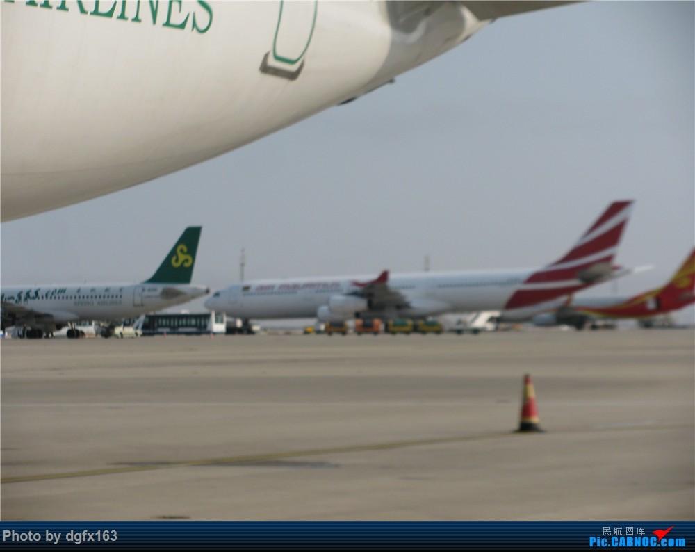 Re:[原创]【dgfx163的游记(9)】春秋航空 A320-200 9C8591 上海PVG-大连DLC 首次选择国内廉价航空,空铁联运回家喽!膜拜大春哥推出的空铁联运 AIRBUS A320-200 B-9920 中国上海浦东国际机场