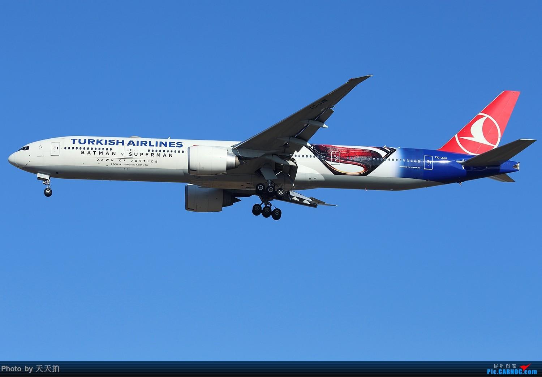 [原创]土尔其航空公司波音777-300彩绘客机执飞北京首都国际机场 BOEING 777-300 TC-JJN 中国北京首都国际机场