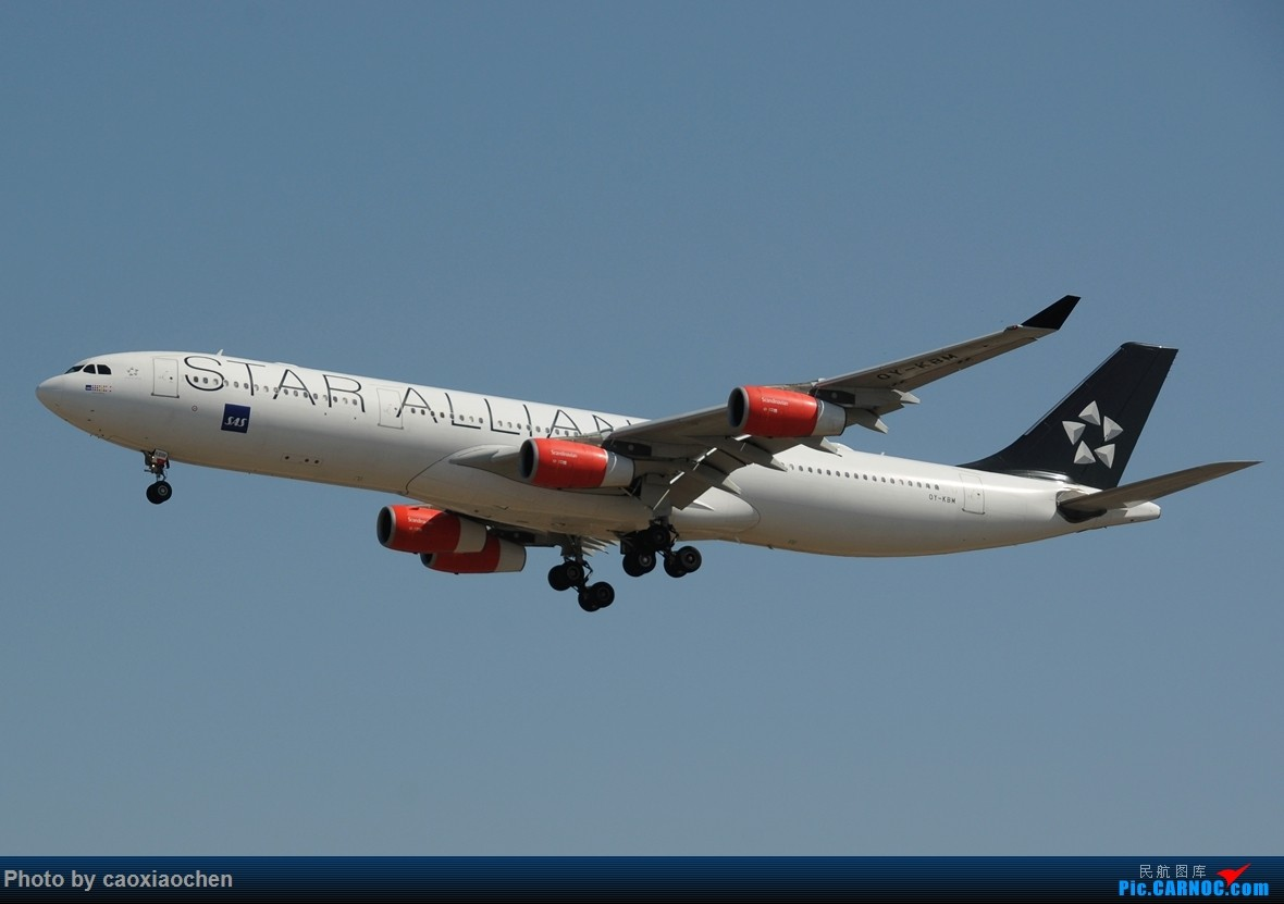 Re:【PEK】ANA星球大战 AY SAS星星 以及几张大头 AIRBUS A340-300 OY-KBM 北京首都国际机场
