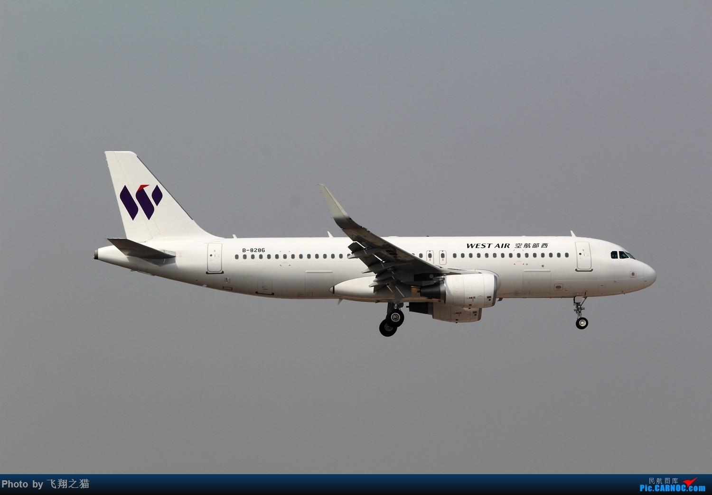 Re:[原创]3月20号就发些320了 AIRBUS A320-200 B-8286 中国重庆江北国际机场