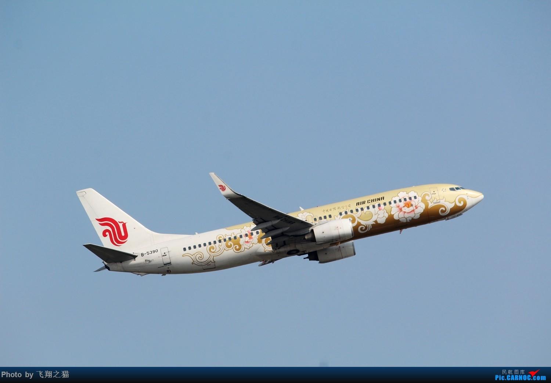 Re:[原创]CKG拍机(蓝色九元,蓝色大运号,蓝色天空) BOEING 737-800 B-5390 中国重庆江北国际机场