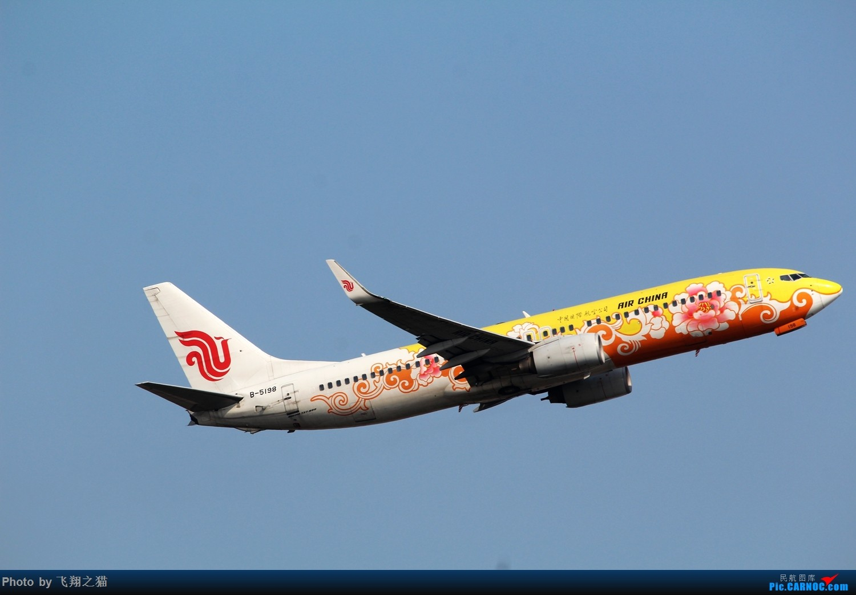 Re:[原创]CKG拍机(蓝色九元,蓝色大运号,蓝色天空) BOEING 737-800 B-5198 中国重庆江北国际机场