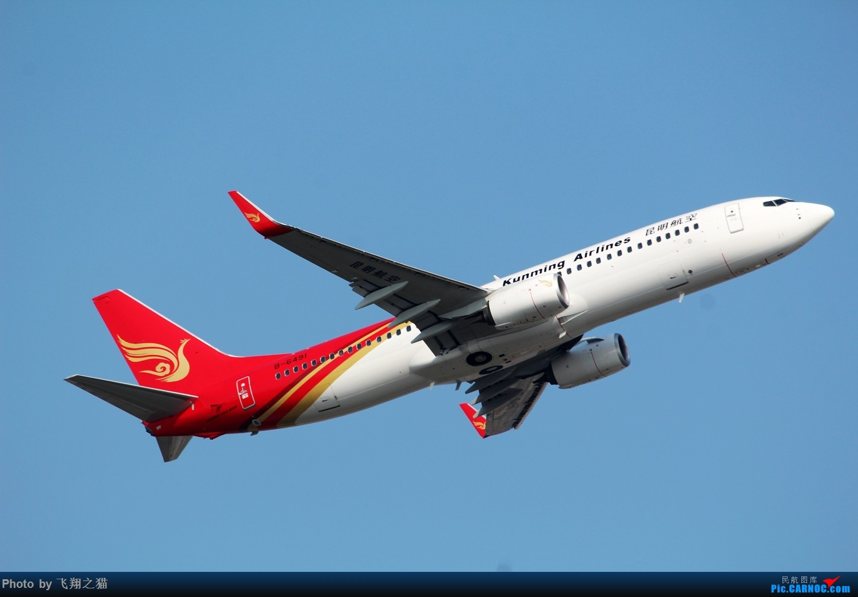 Re:[原创]CKG拍机(蓝色九元,蓝色大运号,蓝色天空) BOEING 737-800 B-6491 中国重庆江北国际机场