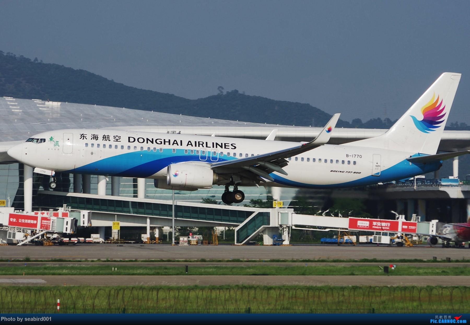 [原创]一组图飞机飞机 BOEING 737-800 B-1705 中国深圳宝安国际机场