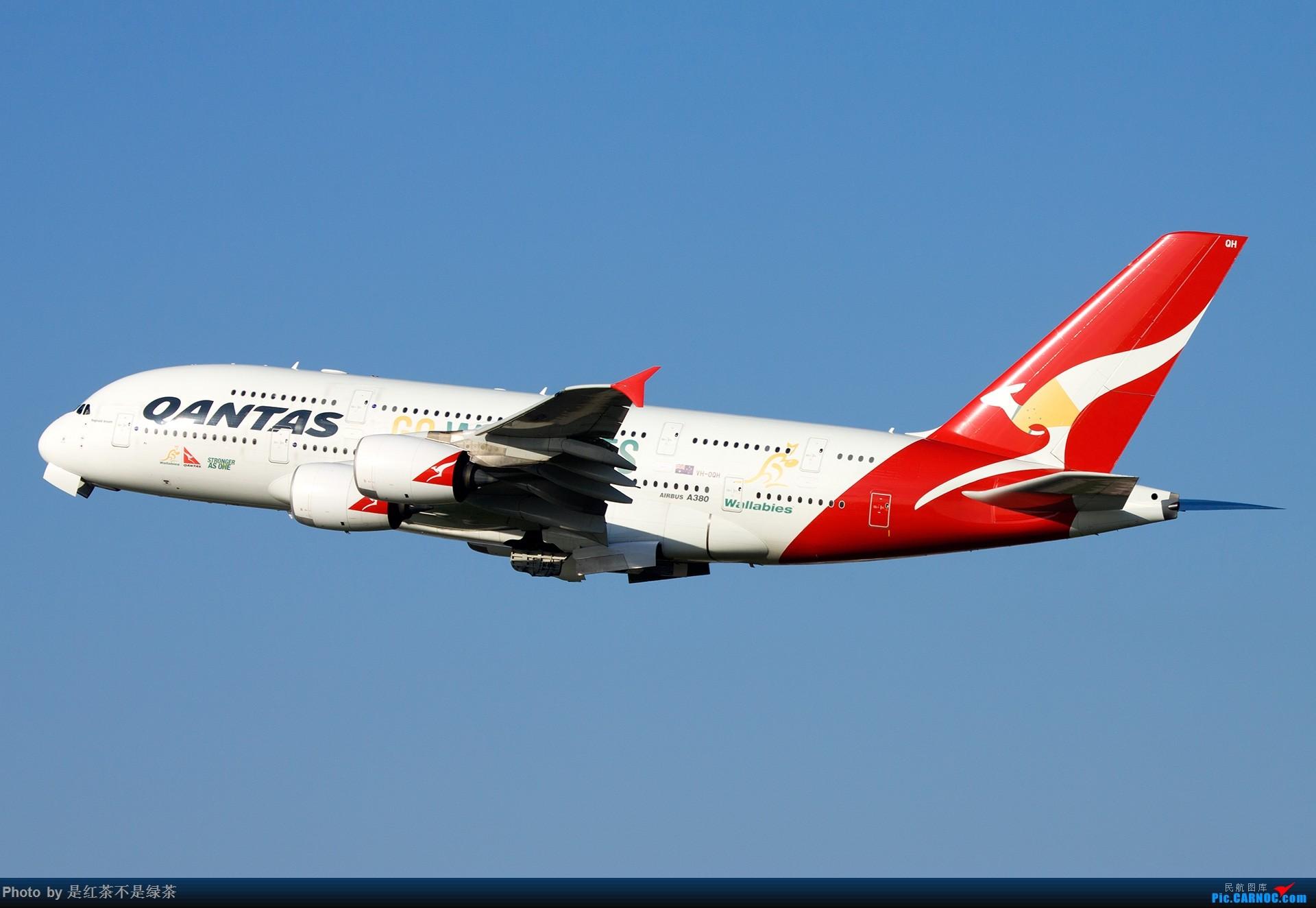 [原创]【红茶拍机】澳洲行半日拍机,距离上次发帖居然有10个月了! AIRBUS A380-800 VH-OQH 澳大利亚悉尼金斯福德·史密斯机场