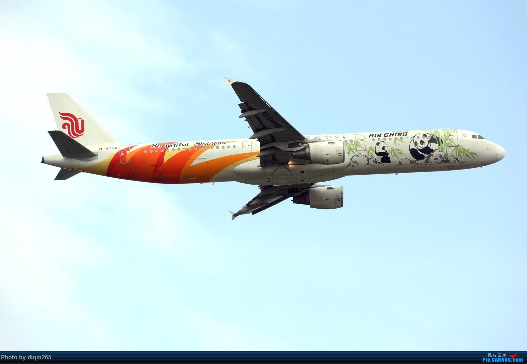 Re:[原创]CTU四月的一个周六 AIRBUS A321-200 B-6365 中国成都双流国际机场