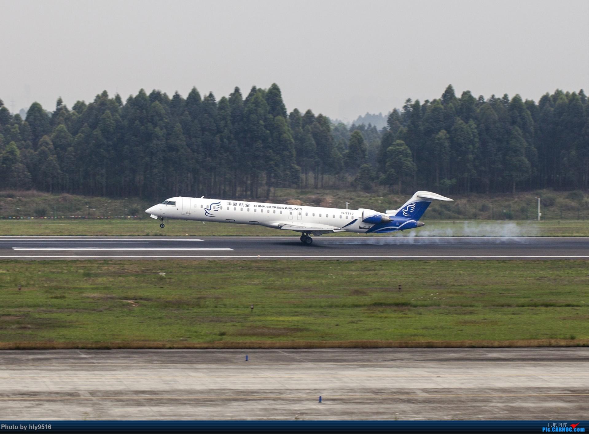 Re:[原创]【CTU】终于解决了大怨念南航A380 偶遇长荣新涂装 两次复飞 小怨念若干 BOMBARDIER CRJ900NG B-3377 中国成都双流国际机场