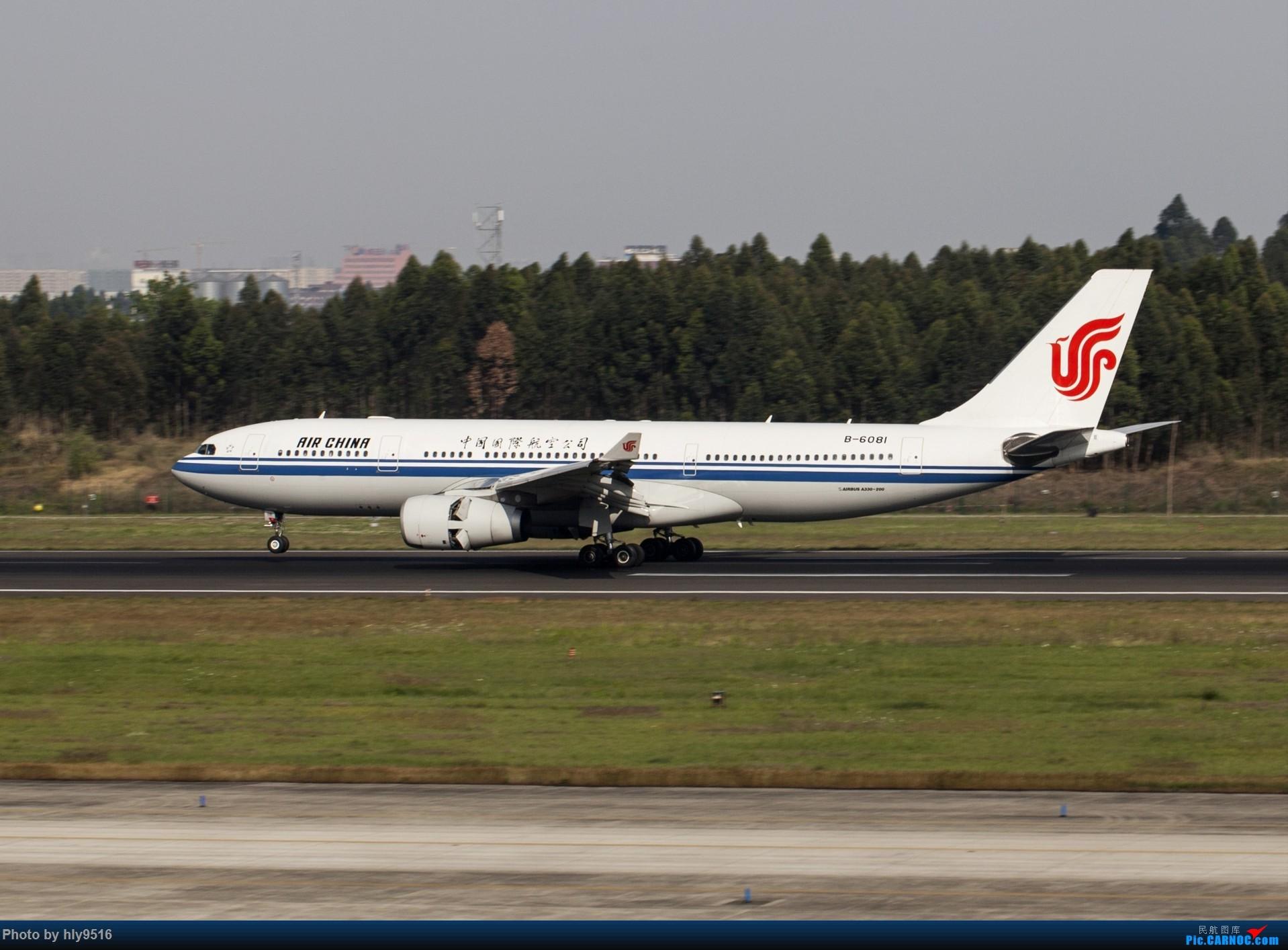 Re:[原创]【CTU】终于解决了大怨念南航A380 偶遇长荣新涂装 两次复飞 小怨念若干 AIRBUS A330-200 B-6081 中国成都双流国际机场