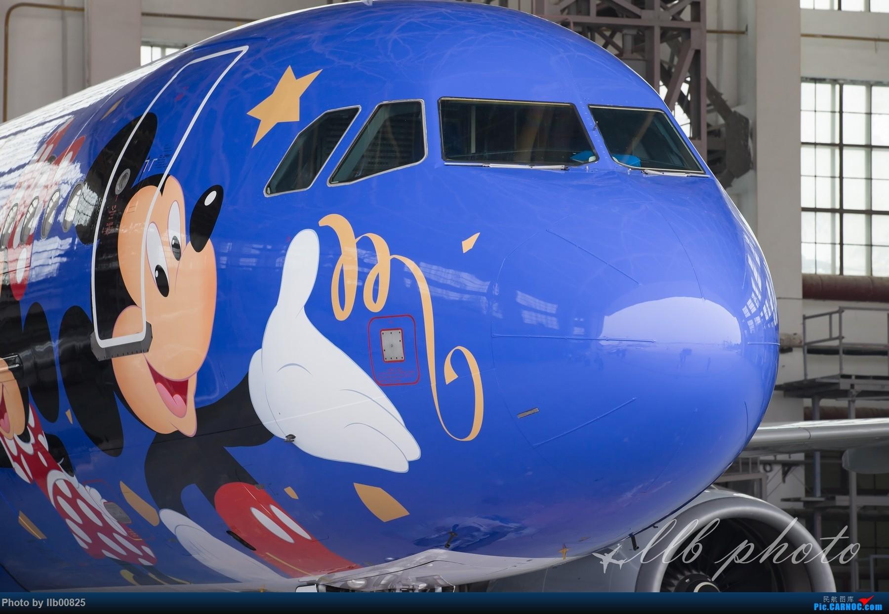 Re:[原创]XIY——B-6635 迪士尼 AIRBUS A320-200 B-6635 中国西安咸阳国际机场