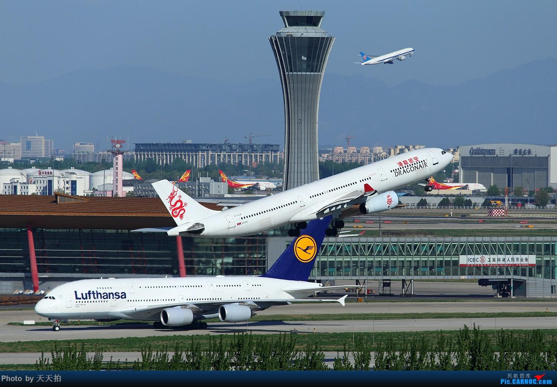 Re:[原创]北京首都国际机场东路苏活楼顶的角度好棒拉起感觉非常的漂亮 AIRBUS A330-300 B-HLB 中国北京首都国际机场
