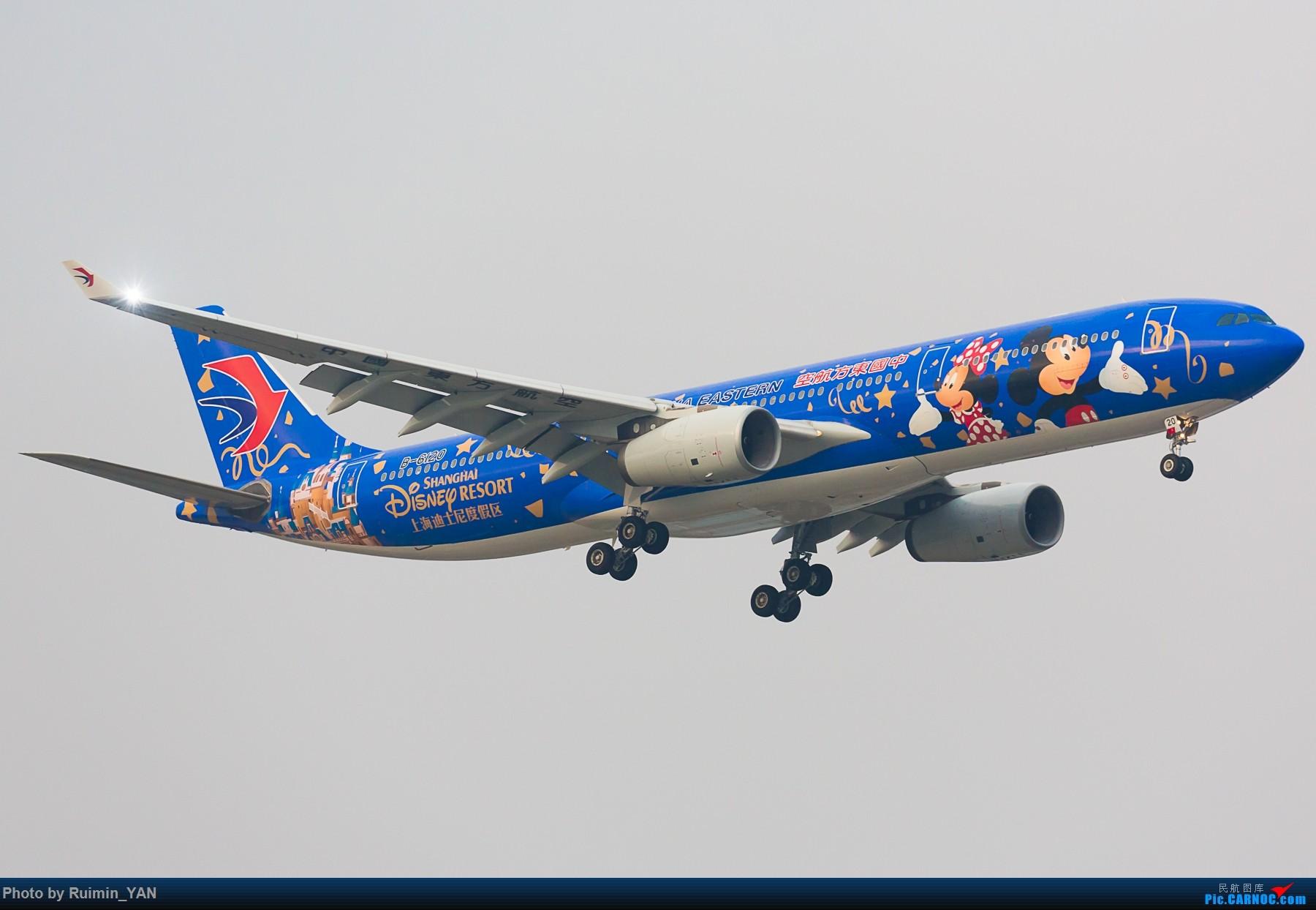 Re:【PEK飞友会】东航迪士尼主题彩绘米老鼠B-6120前世今生-Airbus A330-300 AIRBUS A330-300 B-6120 中国北京首都国际机场