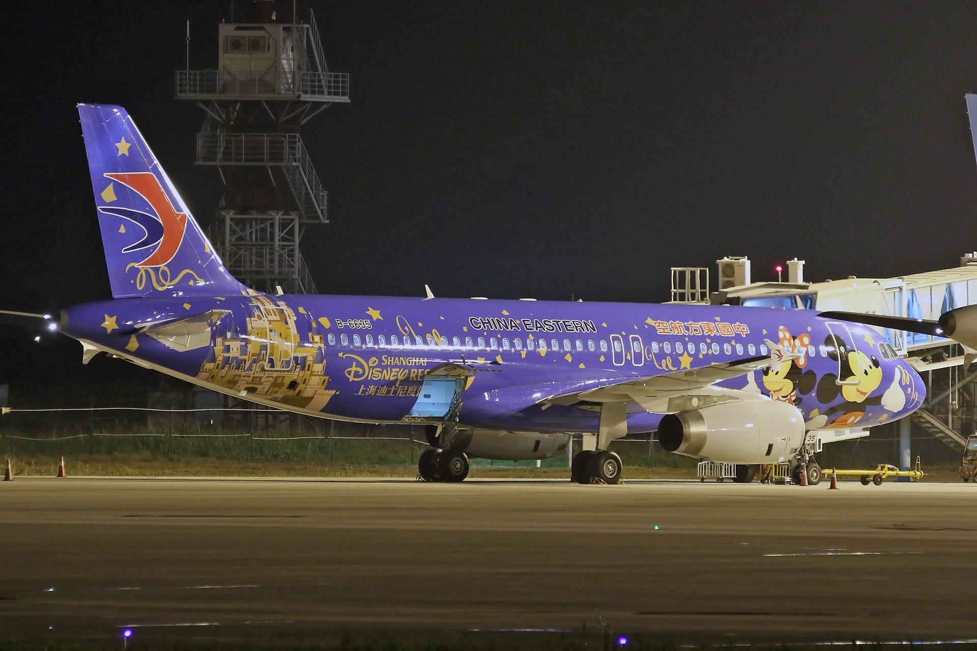 Re:[原创][合肥飞友会]霸都打鸡 找个机会白天打华航 顺便看看期待已久的迪斯尼 AIRBUS A320-200 B-6635 中国合肥新桥国际机场