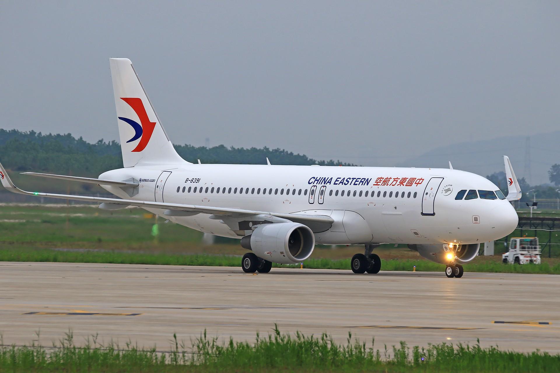 Re:[原创][合肥飞友会]霸都打鸡 找个机会白天打华航 顺便看看期待已久的迪斯尼 AIRBUS A320-200 B-8391 中国合肥新桥国际机场