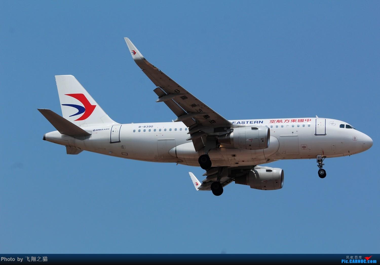 Re:[原创]CKG拍机(初夏拍机,重庆的天一个字晒) AIRBUS A319 B-8390 重庆江北国际机场