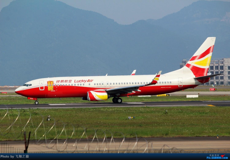 Re:[原创]CKG拍机(初夏拍机,重庆的天一个字晒) BOEING 737-800 B-6015 重庆江北国际机场