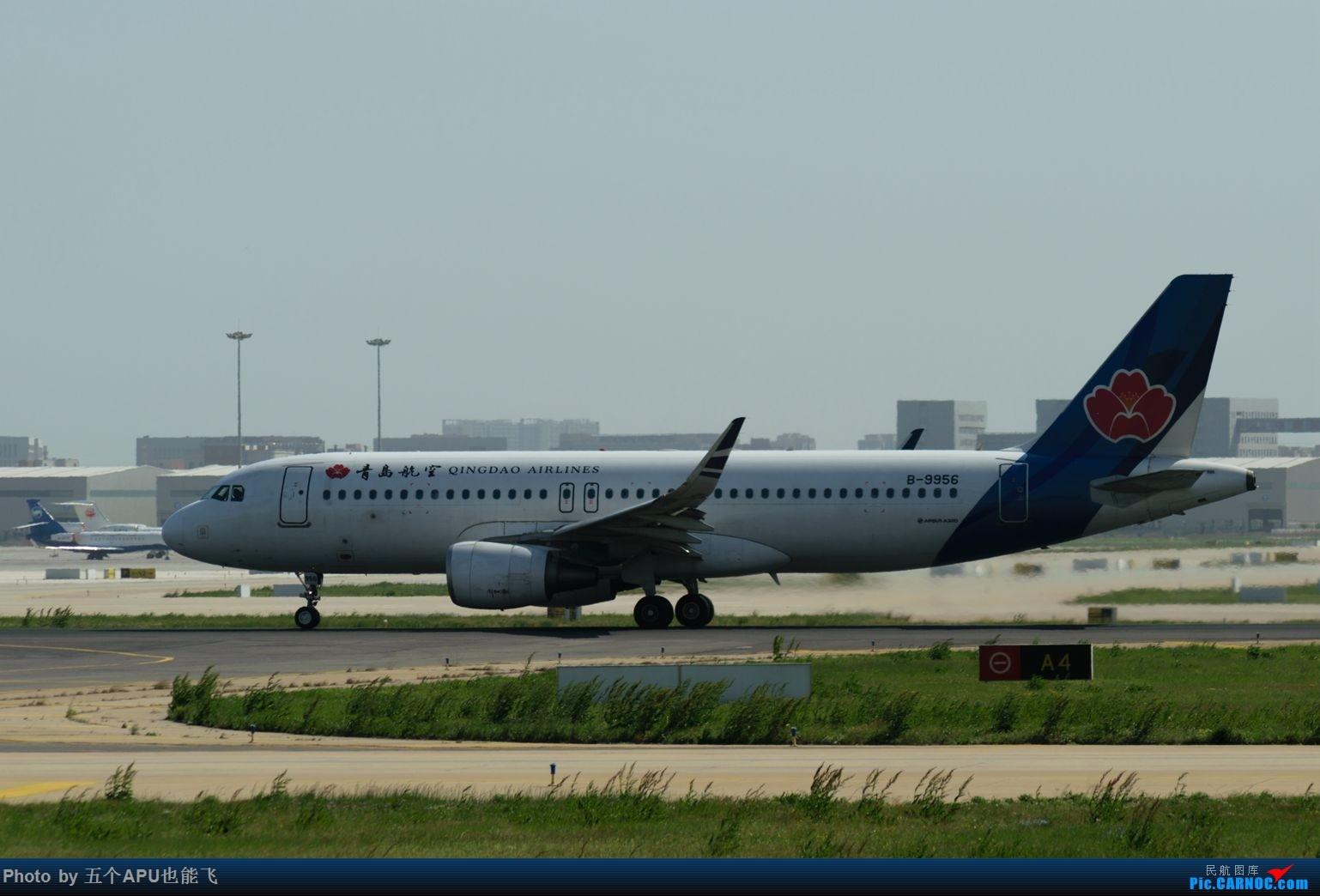 Re:[原创]TSN日常 AIRBUS A320-200 B-9956 中国天津滨海国际机场