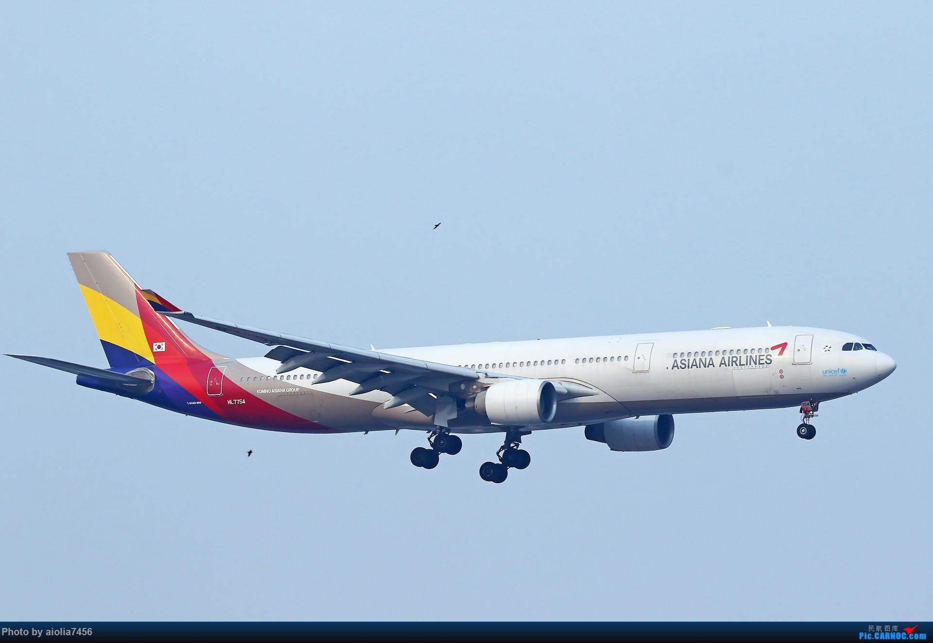 Re:[原创][合肥飞友会]【【村夫进城系列之四】原来上海大飞机看多了也会审美疲劳 AIRBUS A330-300 HL-7754 中国上海虹桥国际机场