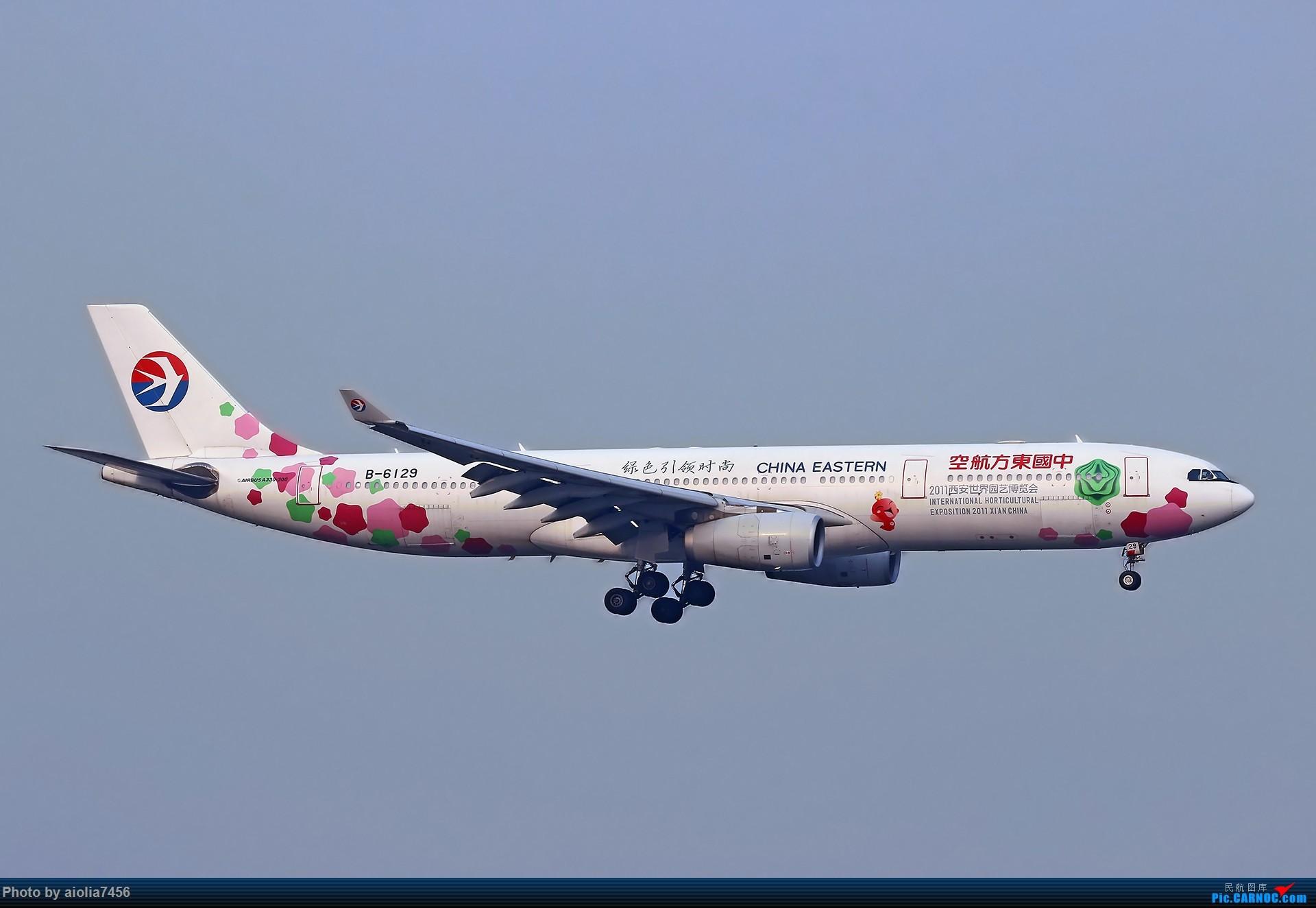 Re:[原创][合肥飞友会]【【村夫进城系列之四】原来上海大飞机看多了也会审美疲劳 AIRBUS A330-300 B-6129 中国上海虹桥国际机场