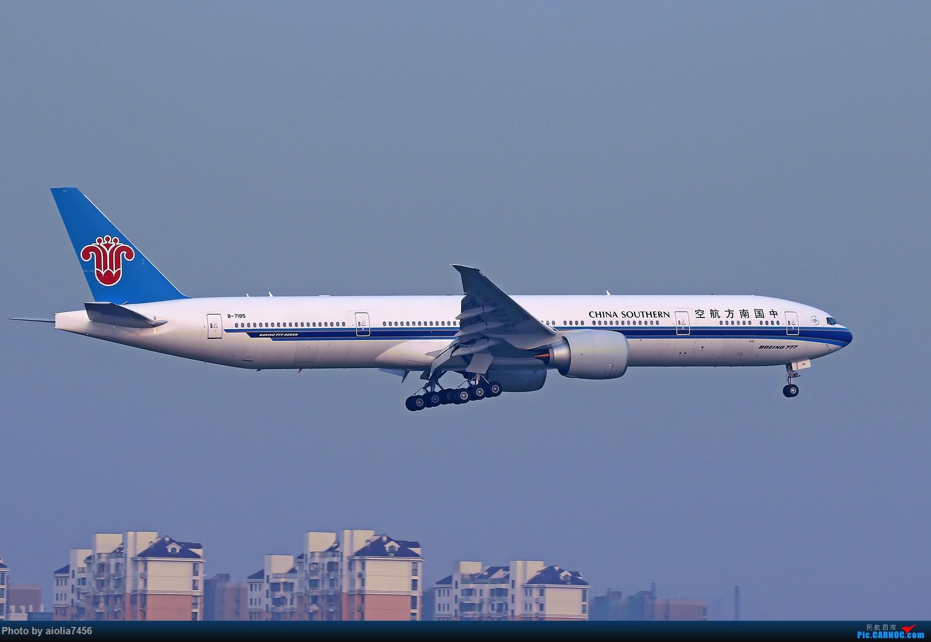 Re:[原创][合肥飞友会]【【村夫进城系列之四】原来上海大飞机看多了也会审美疲劳 BOEING 777-300ER B-7185 中国上海虹桥国际机场
