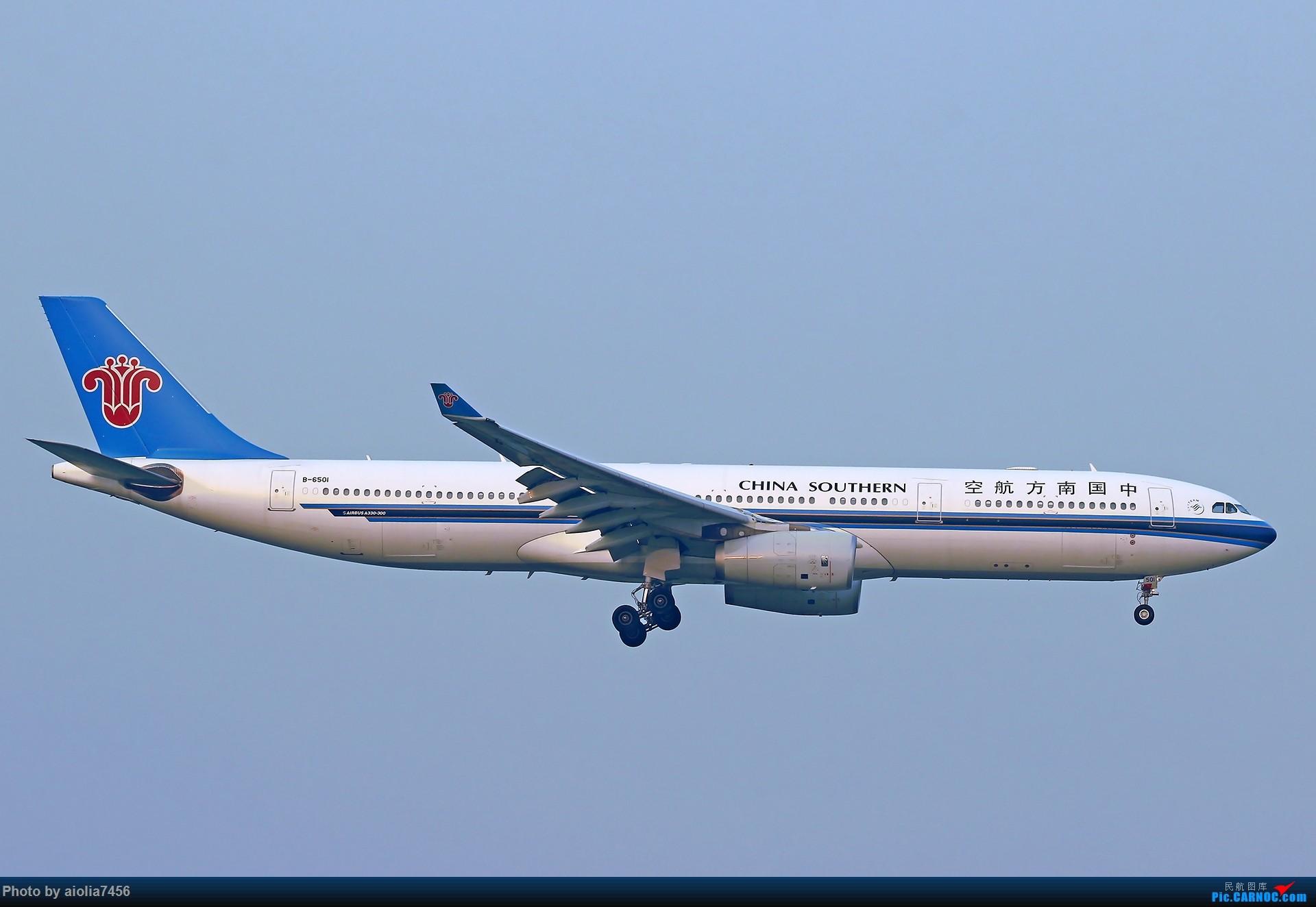 Re:[原创][合肥飞友会]【【村夫进城系列之四】原来上海大飞机看多了也会审美疲劳 AIRBUS A330-300 B-6501 中国上海虹桥国际机场