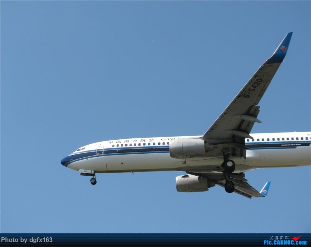 Re:[原创]【dgfx163的拍机(2)大连周水子DLC,比较平淡,内有好货(厦航天合号)ANA货机(763F),还不错 BOEING 737-800 B-5420 中国大连国际机场