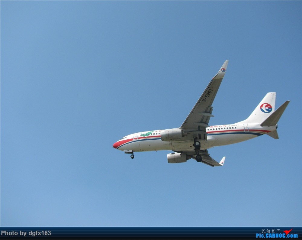 Re:[原创]【dgfx163的拍机(2)大连周水子DLC,比较平淡,内有好货(厦航天合号)ANA货机(763F),还不错 BOEING 737-700 B-5267 中国大连国际机场