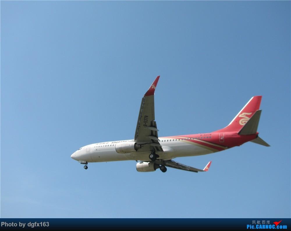 Re:[原创]【dgfx163的拍机(2)大连周水子DLC,比较平淡,内有好货(厦航天合号)ANA货机(763F),还不错 BOEING 737-800 B-5378 中国大连国际机场