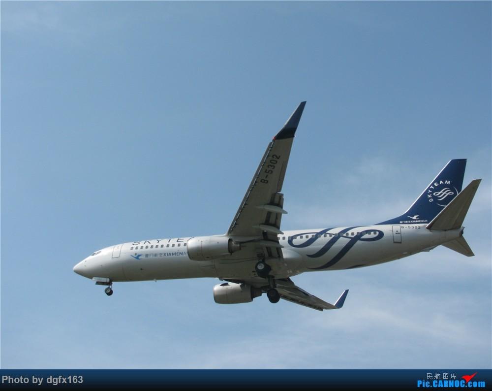 Re:[原创]【dgfx163的拍机(2)大连周水子DLC,比较平淡,内有好货(厦航天合号)ANA货机(763F),还不错 BOEING 737-800 B-5302 中国大连国际机场