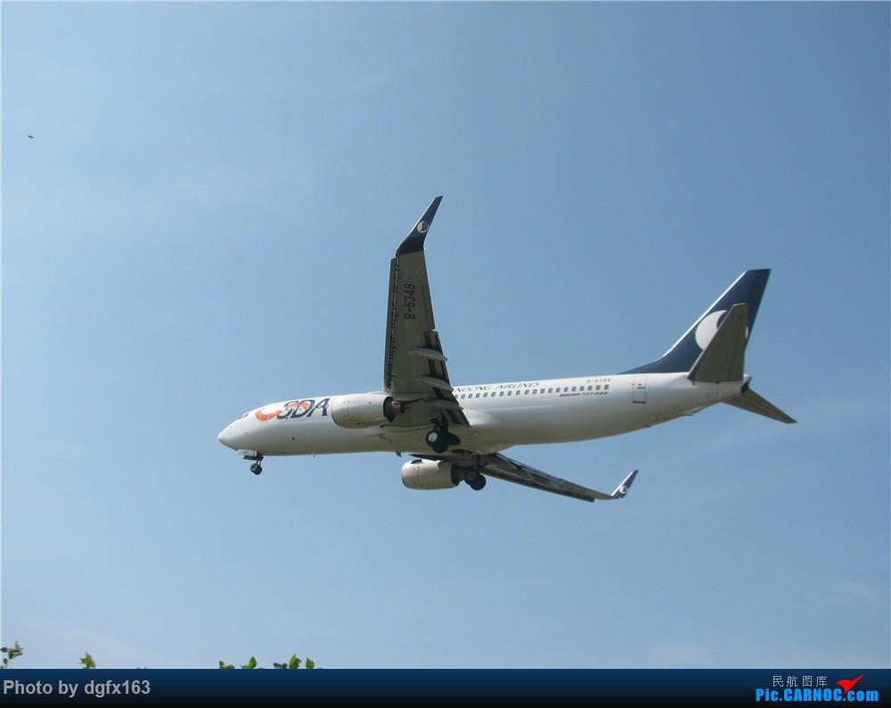 Re:[原创]【dgfx163的拍机(2)大连周水子DLC,比较平淡,内有好货(厦航天合号)ANA货机(763F),还不错 BOEING 737-800 B-5348 中国大连国际机场