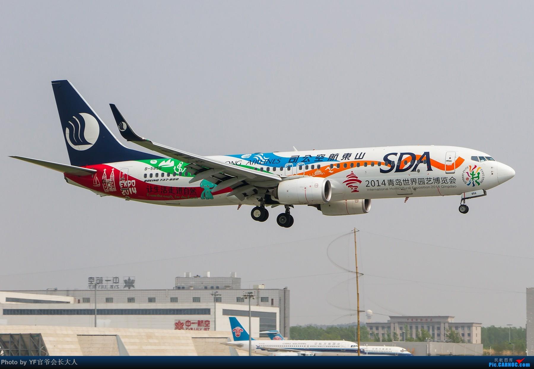 Re:[原创]【ZYTX】轻易不拍机,拍就要拍个过瘾!(新开的酷鸟,亚洲大西洋,顺带碰上朝韩两国的好货) BOEING 737-800 B-5856 中国沈阳桃仙国际机场
