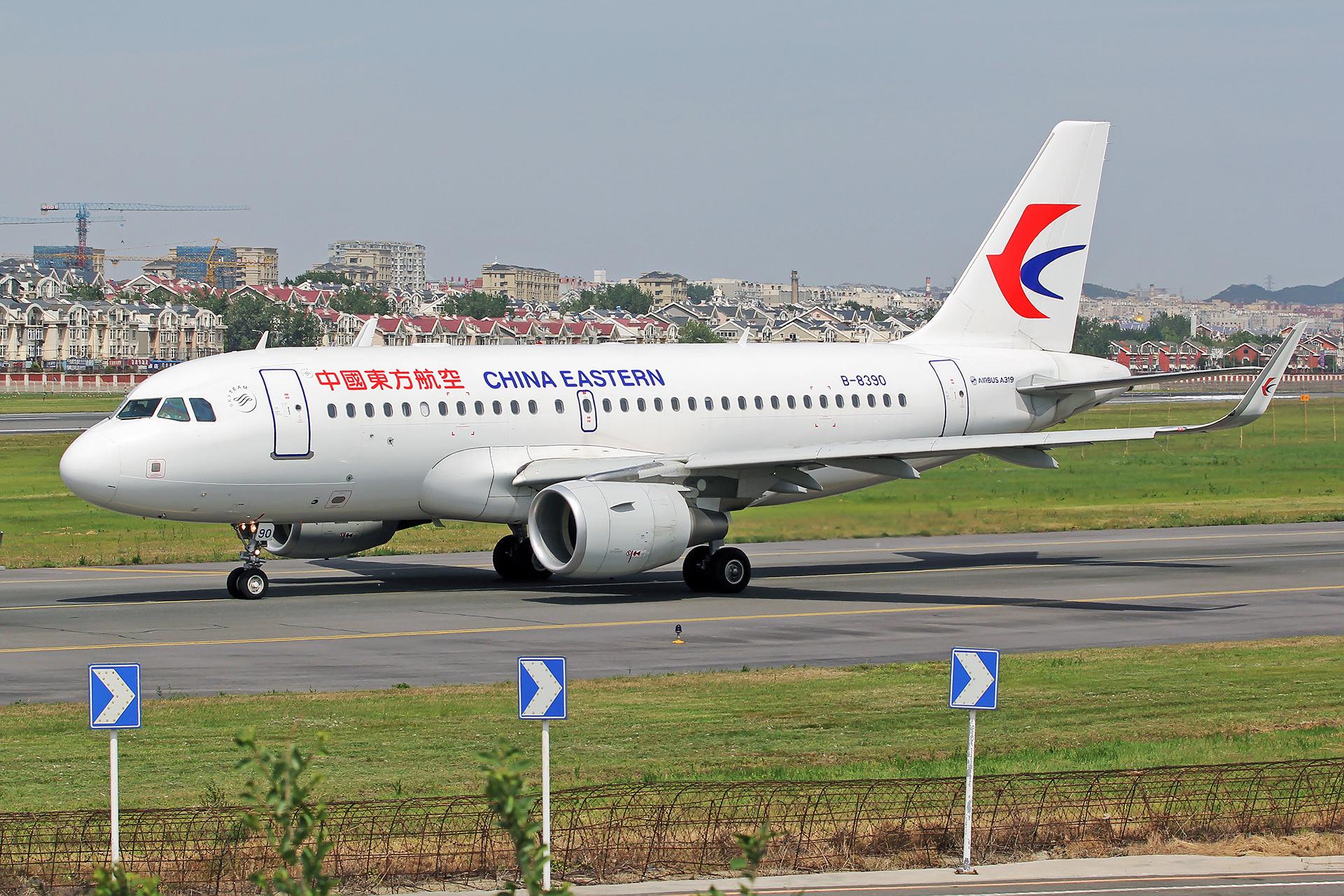Re:[DLC]。。。悠悠青青草。。。 AIRBUS A319-100 B-8390 中国大连国际机场