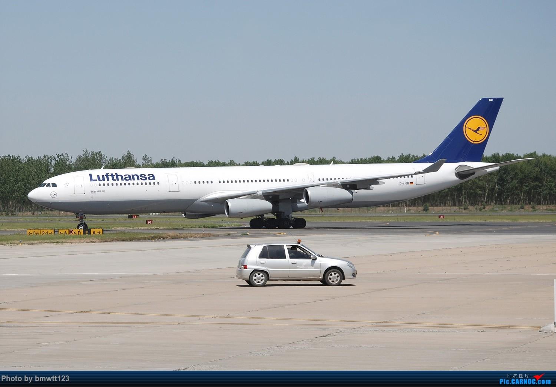 Re:[原创]【SHE沈阳】久违了桃仙机场,周末宽体及彩绘日常! AIRBUS A340-300 D-AIGM 中国沈阳桃仙国际机场