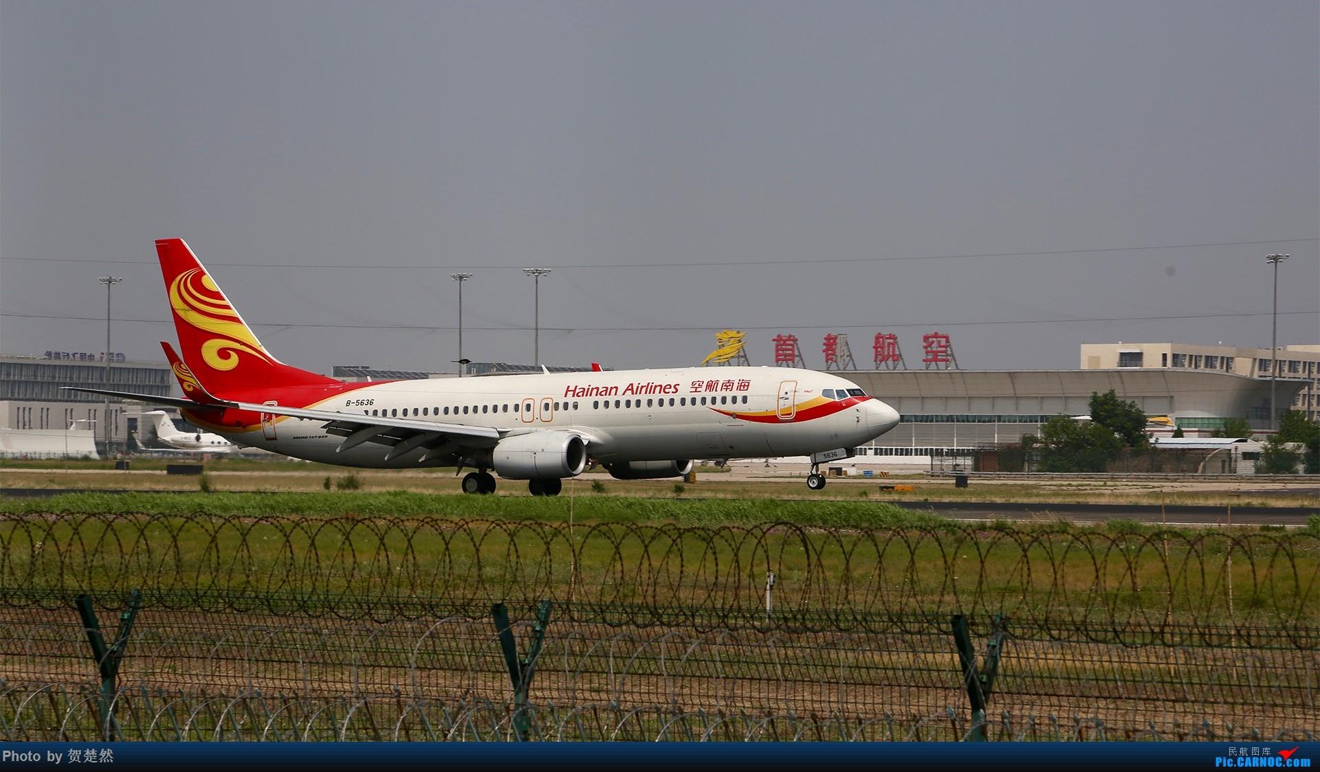 Re:[原创]高考同时高一党ZBAA拍机 BOEING 737-800 B-5636 中国北京首都国际机场