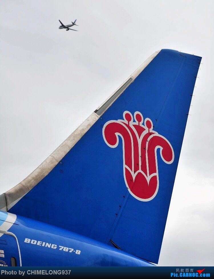 【一图党】【广州飞友会】南航B787-8飞机尾标 BOEING 787-8 B-2725 中国广州白云国际机场