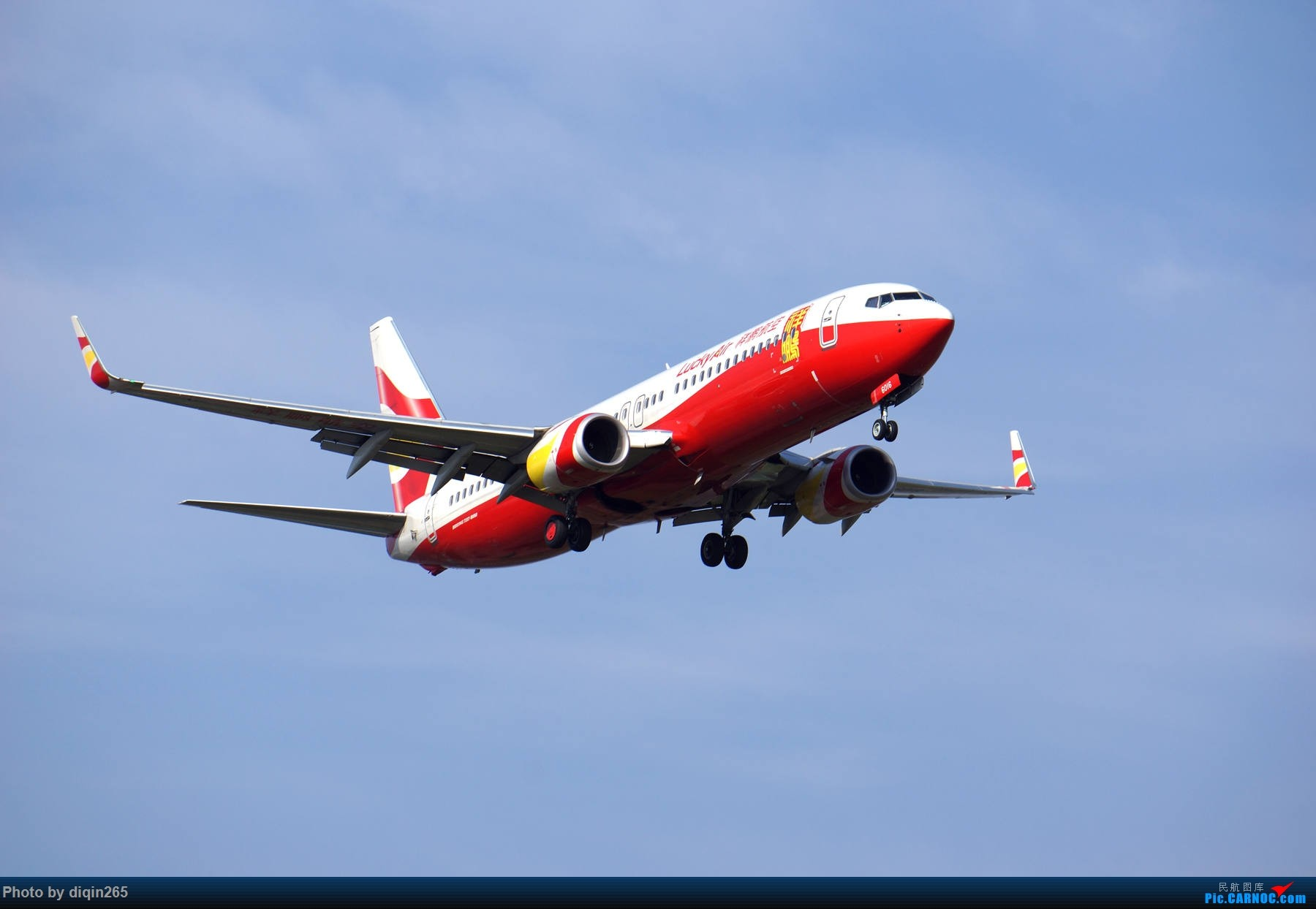 Re:[原创]6月在CKG的首次拍机 BOEING 737-800 B-6016 中国重庆江北国际机场