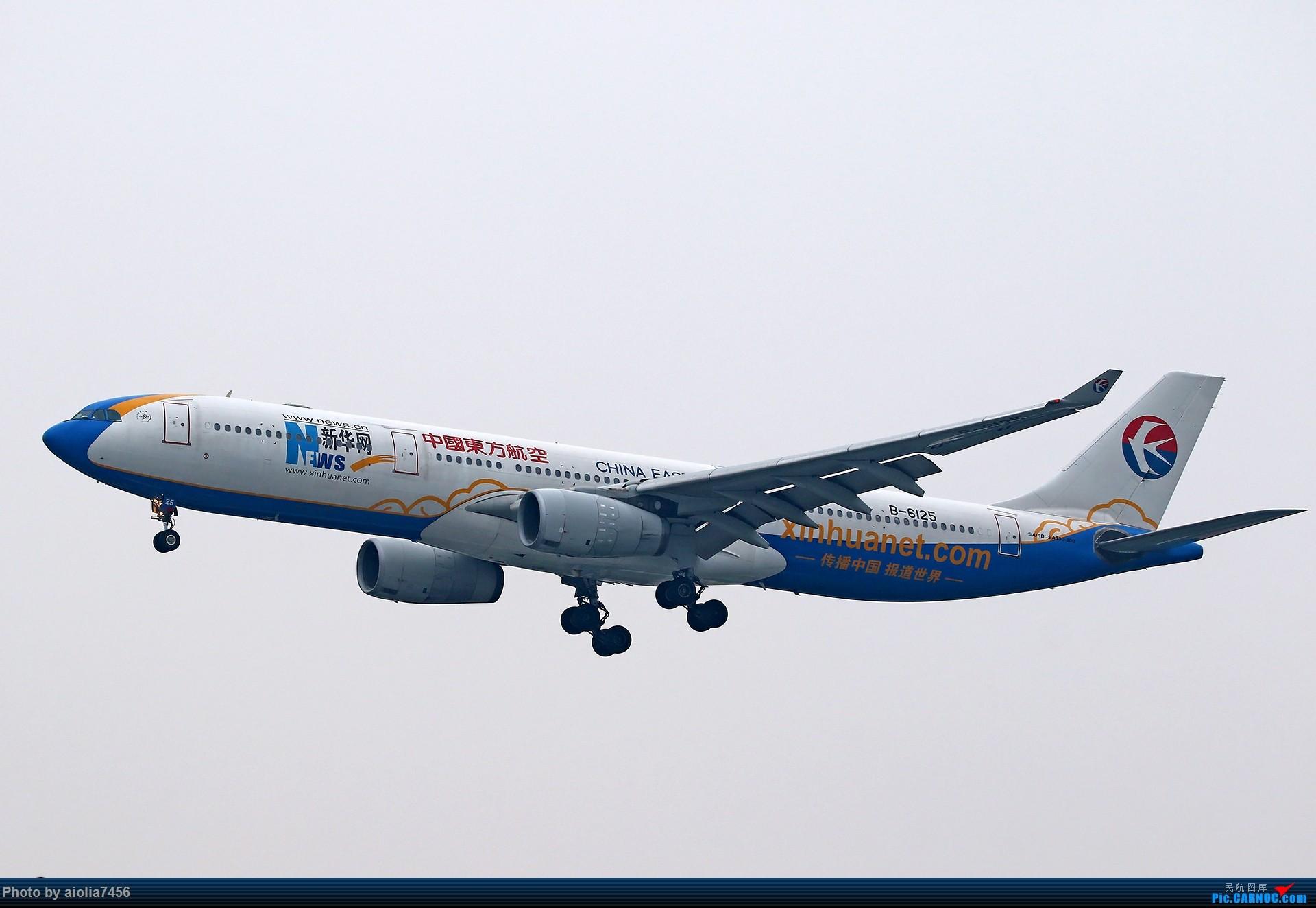 Re:[原创][合肥飞友会]上海打鸡-水泥天的虹桥 AIRBUS A330-300 B-6125 中国上海虹桥国际机场