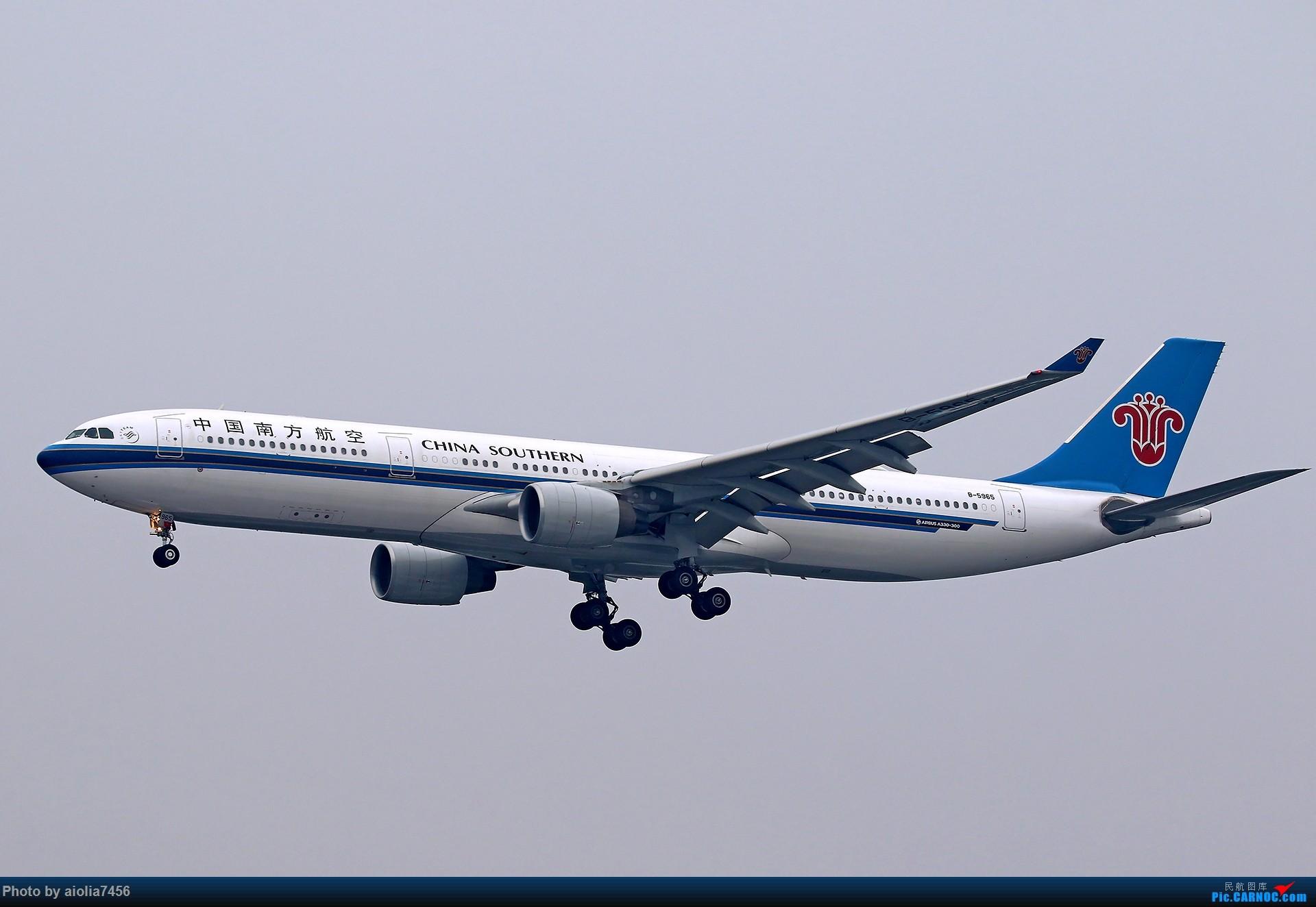 Re:[原创][合肥飞友会]上海打鸡-水泥天的虹桥 AIRBUS A330-300 B-5965 中国上海虹桥国际机场