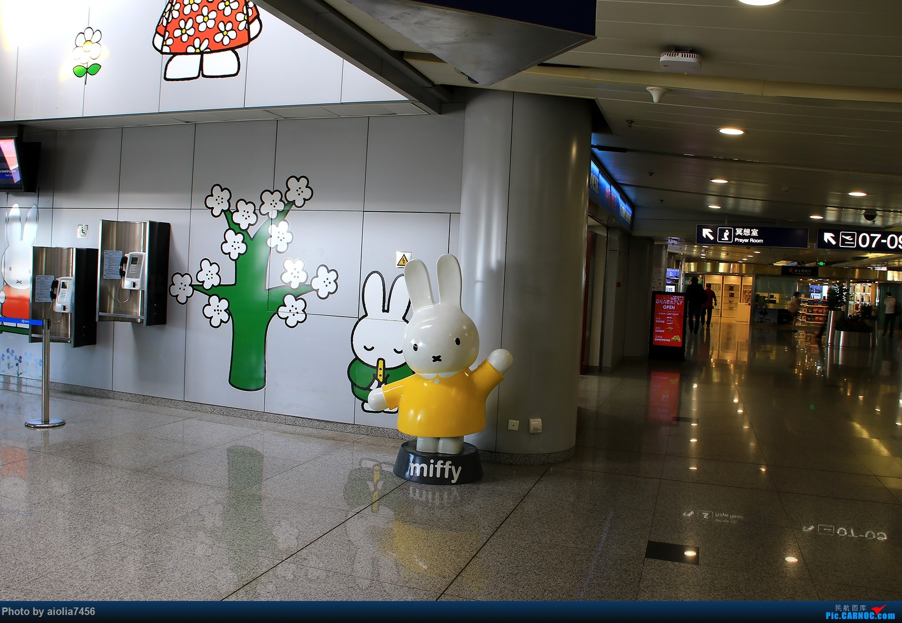 Re:[原创]【合肥飞友会】西行归来系列之三HFE/PEK/AMG/MAD/CDG/PVG/HFE西班牙游记之拥抱伊比利亚    中国北京首都国际机场