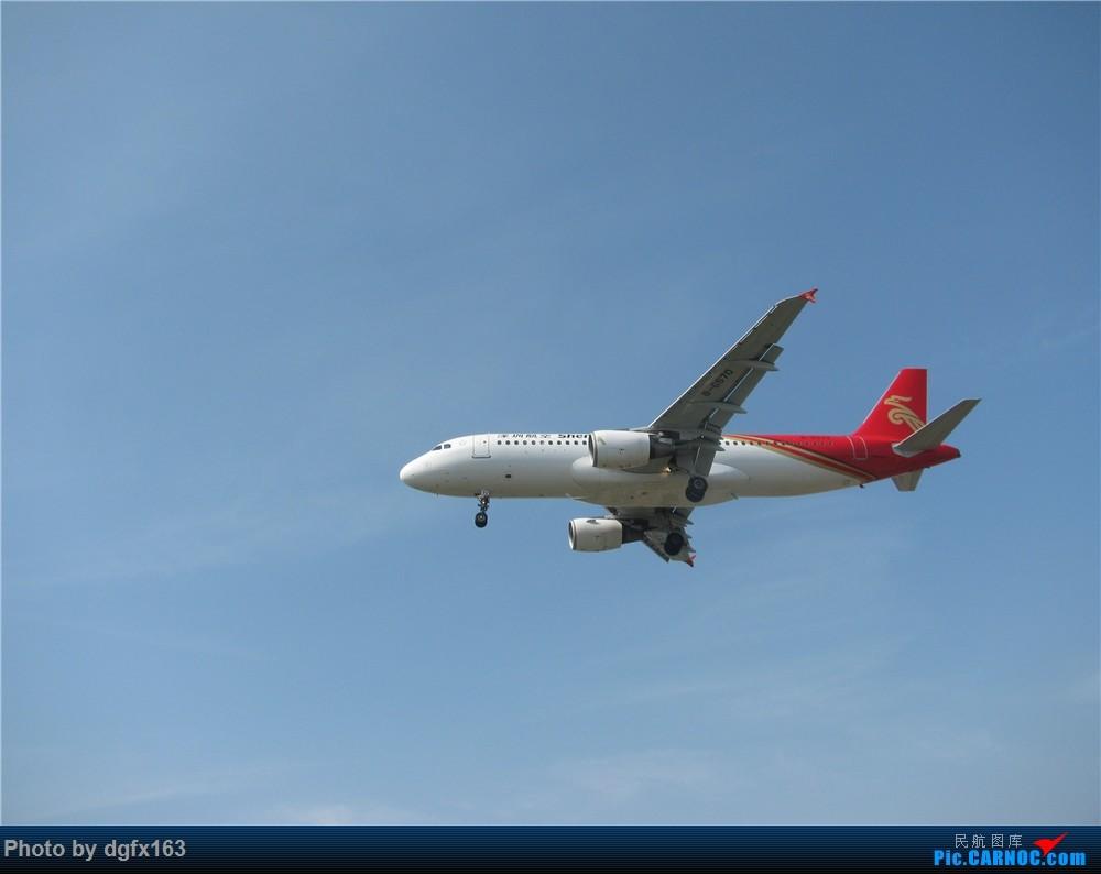 Re:[原创]【dgfx163的拍机(2)大连周水子DLC,比较平淡,内有好货(厦航天合号)ANA货机(763F),还不错 AIRBUS A320-200 B-6570 中国大连国际机场