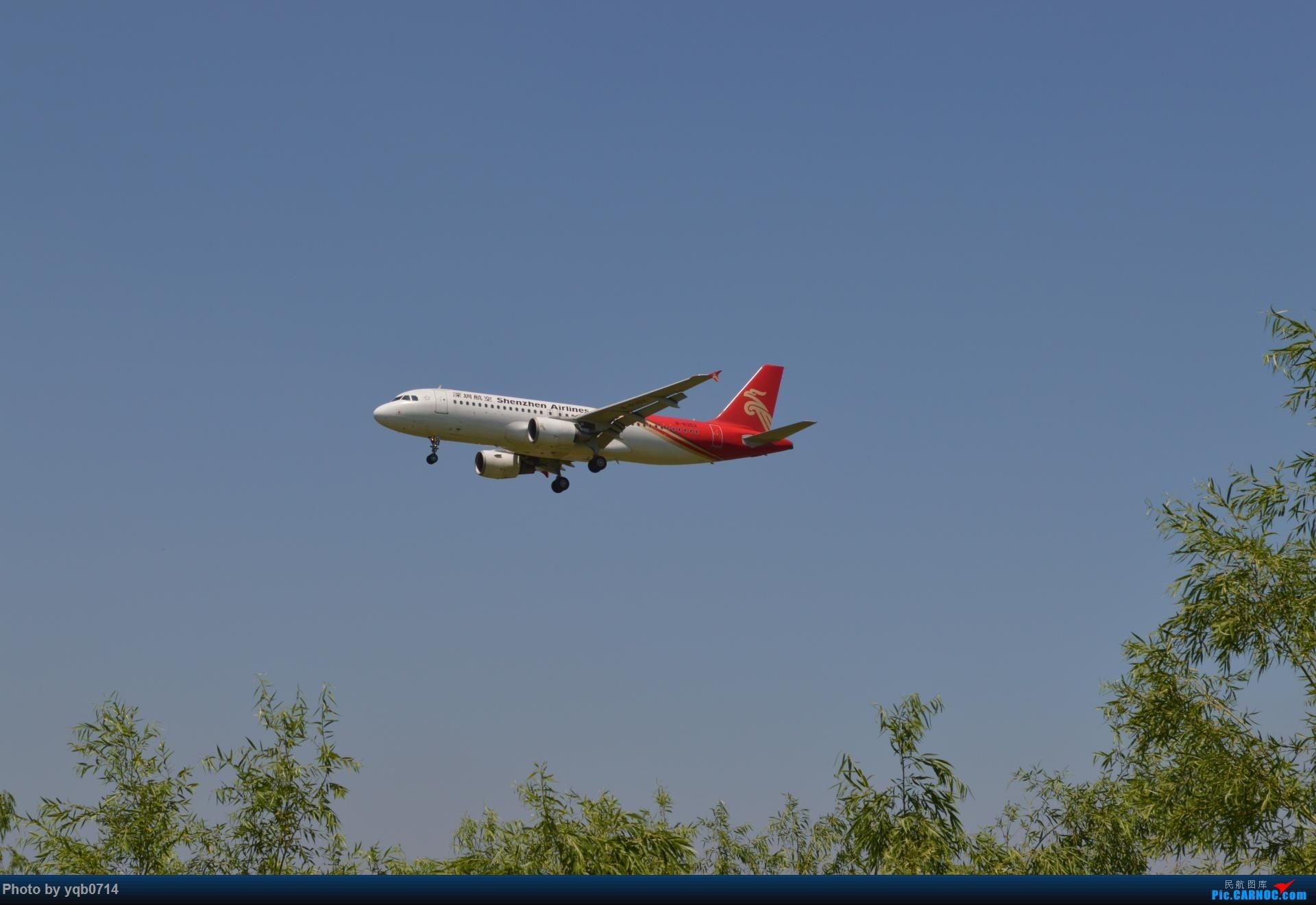 Re:[原创]出来炸道,喜欢星空联盟的小反!!!! AIRBUS A320-200 B-6352